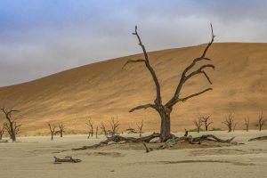 7 Fototipps für Namibia